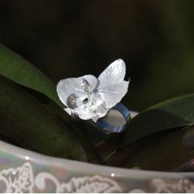 Pierścień Orchids