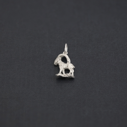 Zodiac sign necklace - CAPRICORN